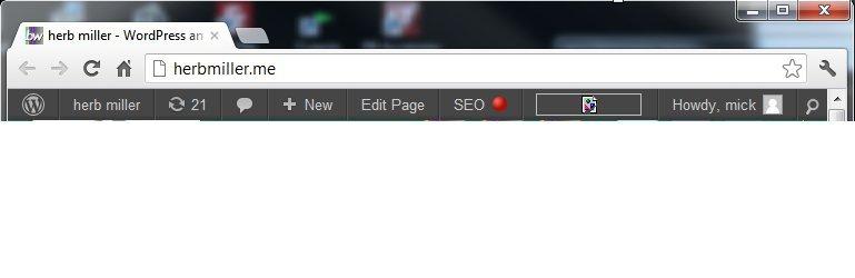 Jetpack stats image now displayed as a broken image